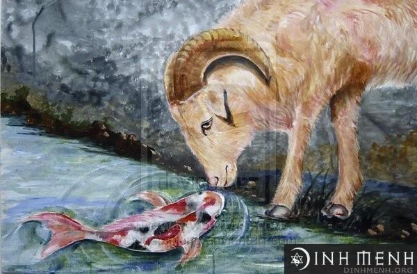 Cung bạch dương và song ngư