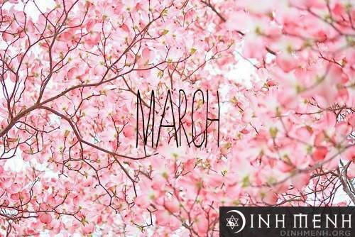 Người sinh vào tháng Ba năm Sửu