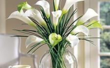 Bình hoa có thể là nguyên nhân gây ngoại tình