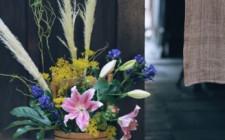 Chưng hoa mang lại may mắn và niềm vui cho gia chủ