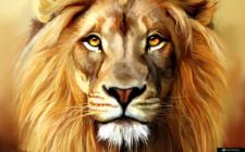 Giải mã các bí ẩn giấc mơ thấy con sư tử