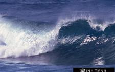Giải mã các bí ẩn giấc mơ thấy đợt sóng biển