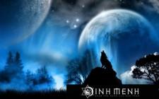 Giải mã các bí ẩn giấc mơ thấy hình ảnh con sói