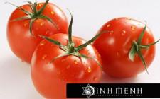 Giải mã các bí ẩn giấc mơ thấy quả cà chua