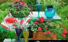 Nguyên tắc phong thủy trong bài trí sân vườn