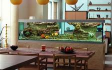 Những vị trí đặt bể cá hợp phong thủy
