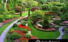Phong Thủy cho khu vườn