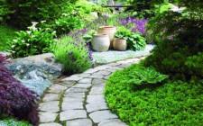 Sân vườn lát quá nhiều đá sẽ mang nhiều âm khí