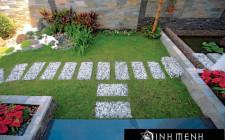 Tư vấn chọn cây cối phù hợp cho sân vườn