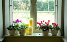 Bài trí cửa sổ mang lại vận may