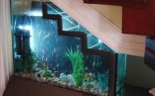 Bố trí hồ cá cảnh dưới gầm cầu thang như thế nào cho phù hợp