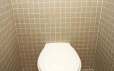 Nên đóng cửa toilet và nắp bồn cầu khi không sử dụng