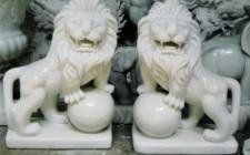 Bài trí của sư tử