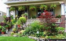 Cách làm đẹp sân nhà