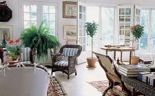Cách trang trí cây cảnh trong phòng khách