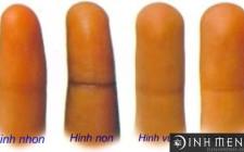 Cách xem tướng đoán tính cách con người qua hình dạng ngón tay
