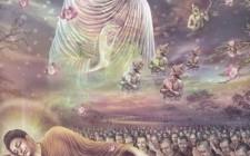Giấc mơ liên quan đến đạo Phật