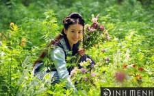 Mơ thấy hái hoa tươi: Có niềm vui và hạnh phúc