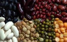 Mơ thấy hạt đậu: Tượng trưng sức mạnh tiềm ẩn