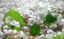 Mơ thấy mưa đá: Chịu tổn thất và gặp họa tai
