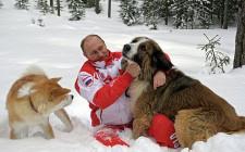 Mơ thấy người và chó nô đùa thân thiết: Sự chân thành giữa bạn bè và kết quả về mặt tình cảm