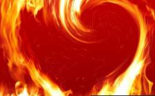 Mơ thấy tim: Tình yêu và quan hệ cả nhân thuận lợi