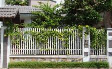 Những cấm kỵ khi xây tường rào