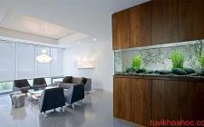 Những điều chú ý khi đặt bể cá trong phòng khách