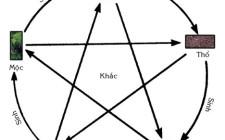 Sự ra đời của thuyết ngũ hành