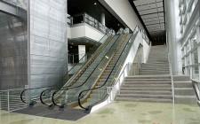 Thiết kế cầu thang tự động tại cửa hàng