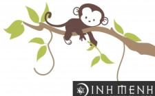 Tử vi 2015 cho tuổi Thân: Bính Thân, Mậu Thân, Canh Thân, Nhâm Thân