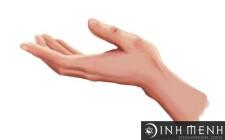 Xem tướng tay – hình dạng nhận xét chung