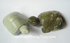 Giải mã các bí ẩn giấc mơ thấy con rùa