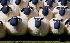 Khám phá ý nghĩa giấc mơ thấy Con Cừu - ngủ nằm mơ thấy Cừu