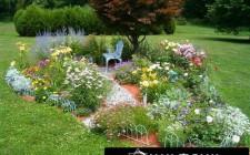 Sân vườn nhỏ đẹp và hợp phong thủy