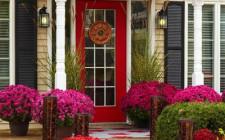 Những điều cần lưu ý khi bày trí cửa chính cho ngôi nhà