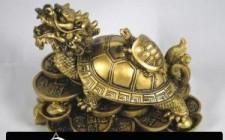Vị trí đặt rùa để hóa giải khí xấu
