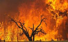 Mơ thấy hỏa hoạn: Có mối hiểm họa lớn
