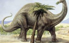 Mơ thấy khủng long: Tượng trưng cho người mẹ