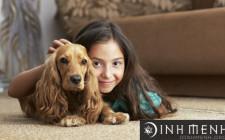 Phong thủy cần lưu ý khi nuôi thú cưng
