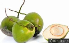 Ý nghĩa của các loại trái cây trong Mâm Ngũ Quả tết